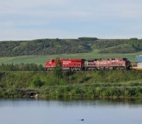 37-gallery-train